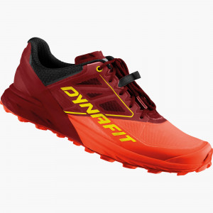 Alpine running shoe men