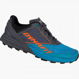 Running shoe ALPINE men
